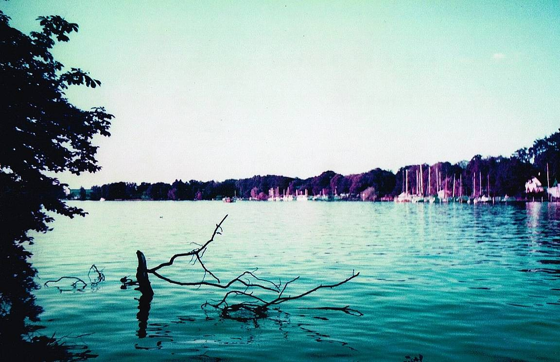 Novalee is our LomoHome of the Day!