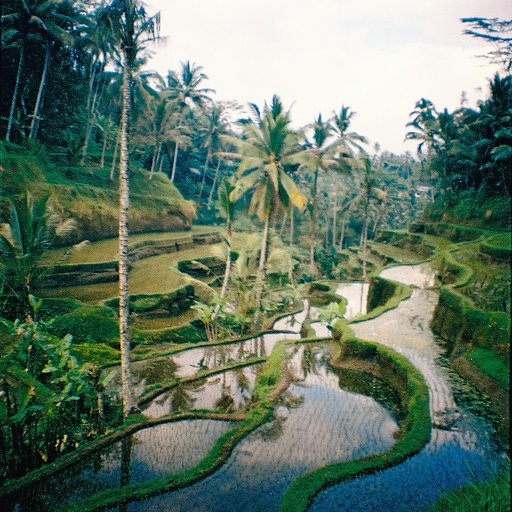 Ubud, Bali: Beautiful Rice Terraces & Cultural Experiences