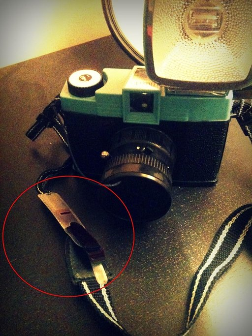 Diana F+ Colourful Flash Gels: Always With Me!