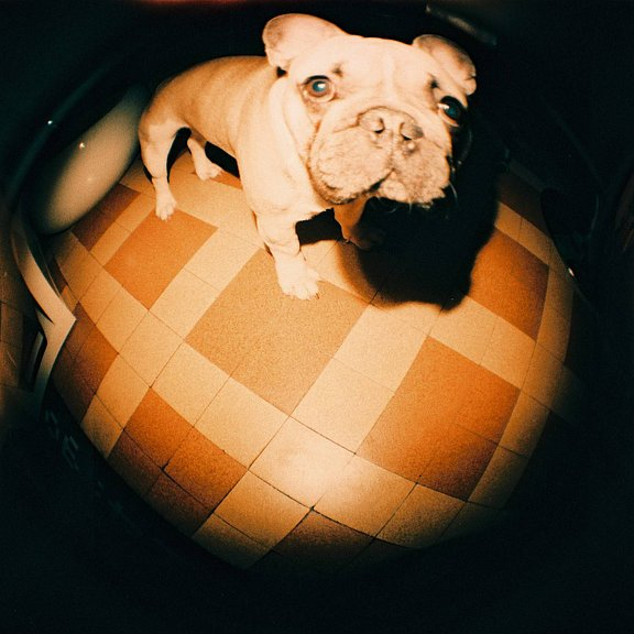 Marineije is our LomoHome of the Day!