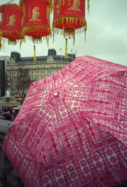 Chinese New Year Celebrations Under the Rain