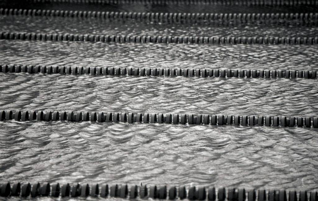 Manoa Valley Swimming Pool: A Sea of Black and White