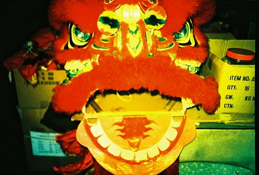 Visit the Lion Dance Shop
