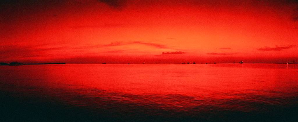 I ♥ RED: rollei nightbird 800