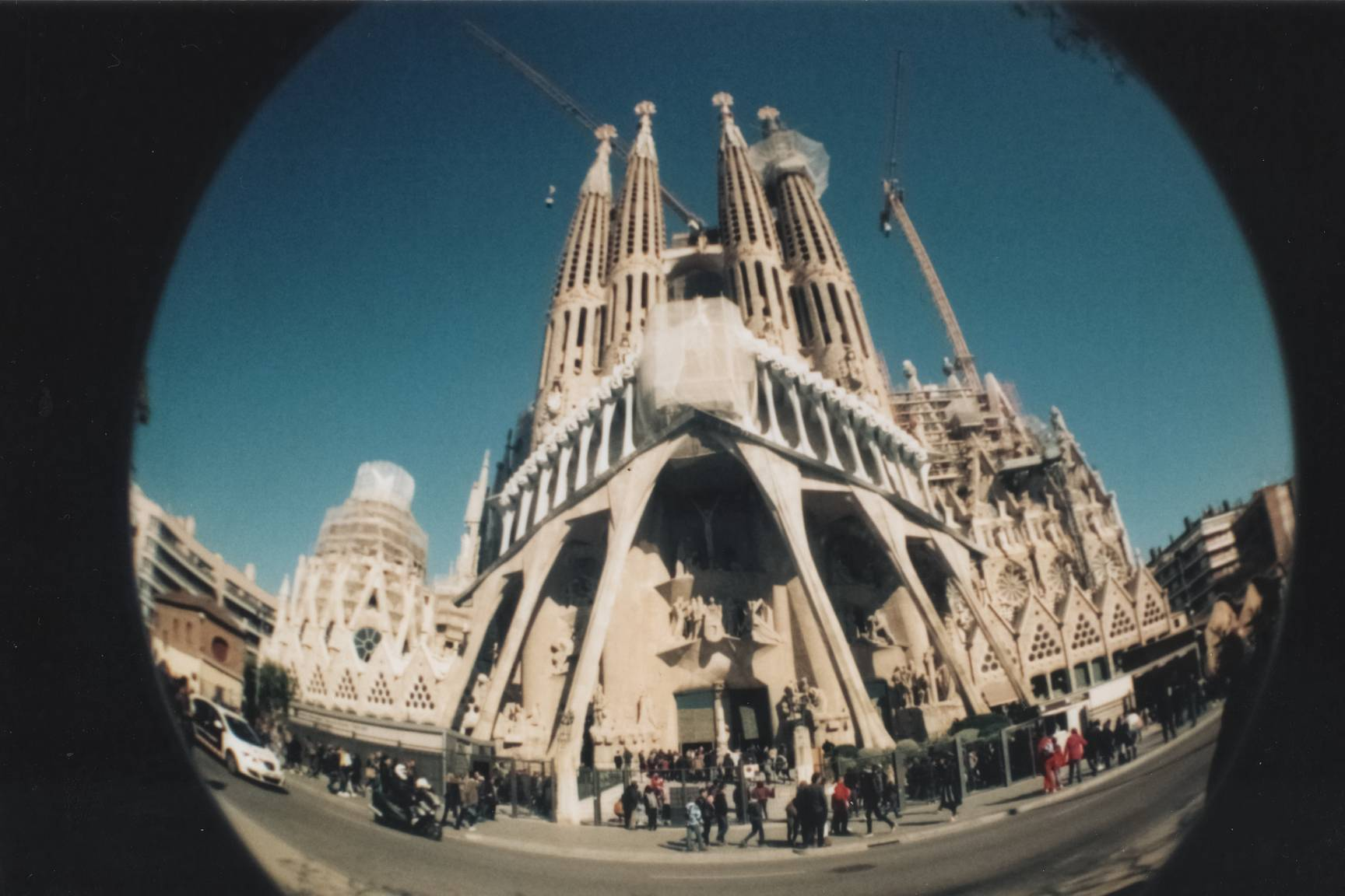 An Ant s Eye View with the Fisheye No 2 · Lomography
