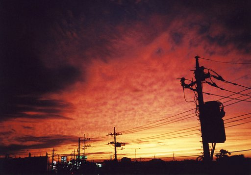 Pictures That Shaped Lomography 2006
