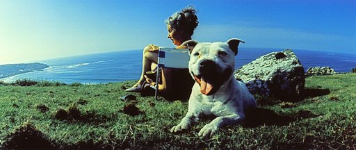 Man's Best Friend on Film