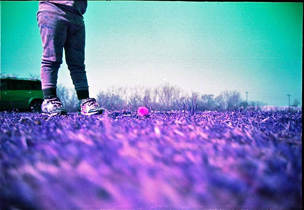 Plunge deeper into purple territory with these LomoChrome Purple snaps!
