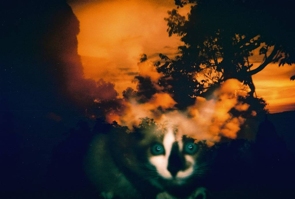 Blast from the Past: Malaysia's Top Articles for October 2012