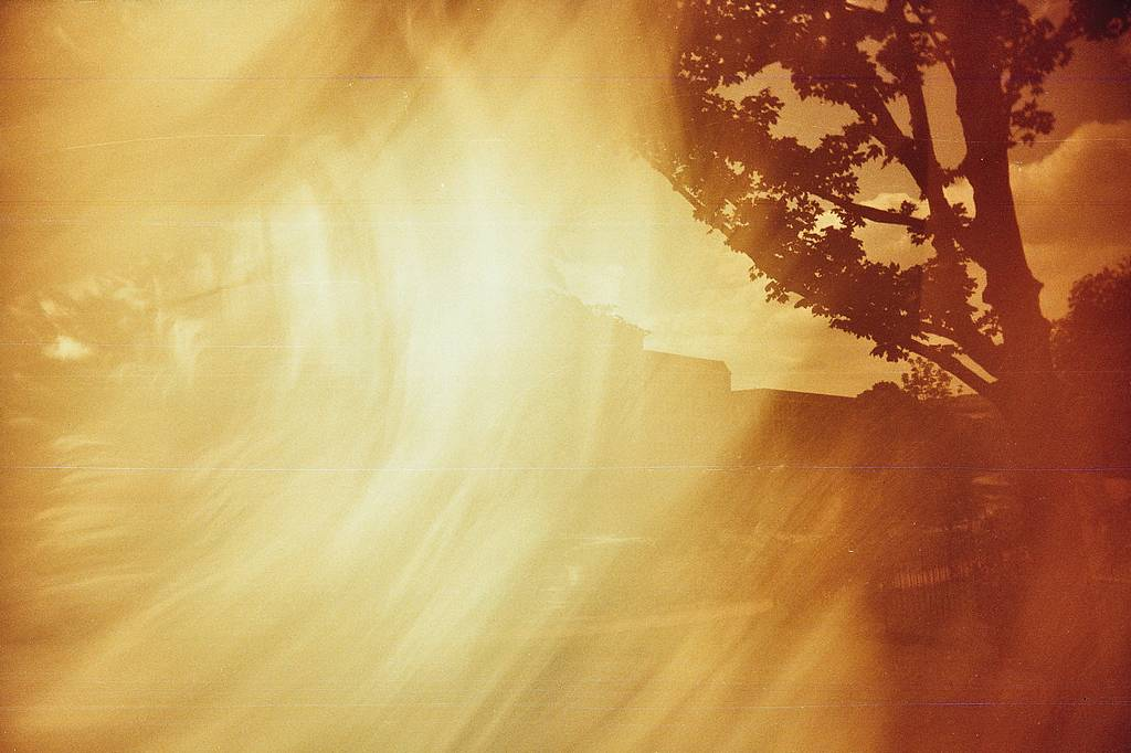 Perfect Combination: Superheadz Wide and Slim and Lomography Redscale XR