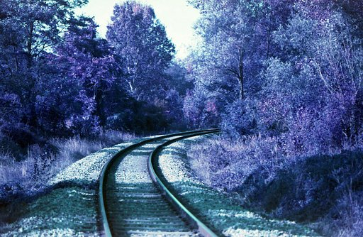 LomoChrome Purple Simple Use Film Camera Atölyesi - 20 Ağustos 2017