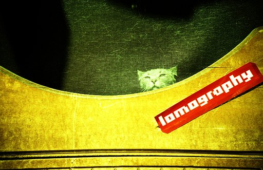 Work for Lomography!