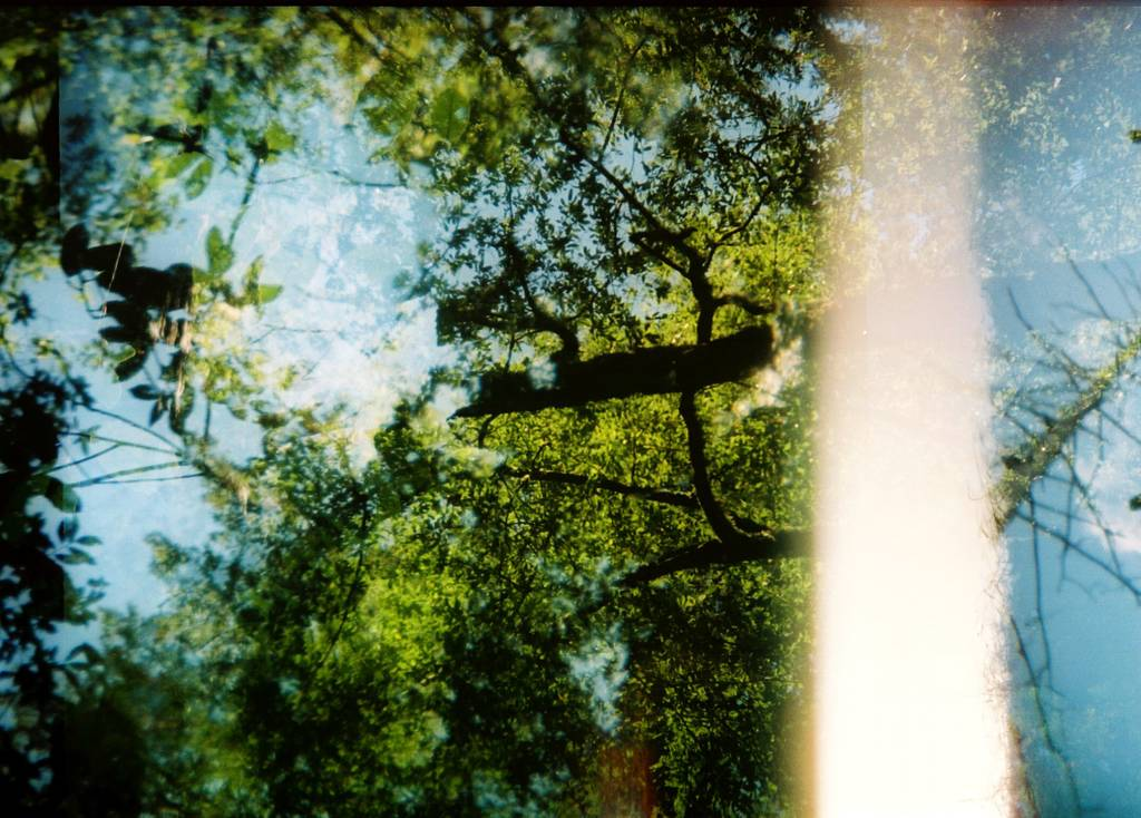Achieving Lush Light Leaks on Your Holga 135bc or Holga 135