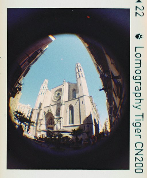 Duel! Baby Fisheye with Tiger 200 vs. Diana Mini with X-Pro 200