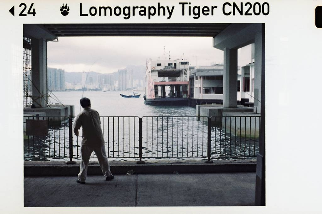 A Tiger For Hong Kong