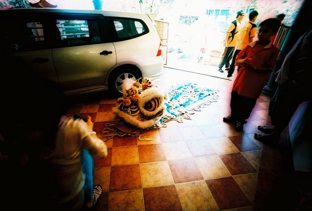 Chinese New Year in Analogue: From Diana Mini Dragon to LC-Wide Snake