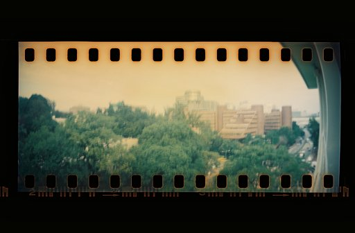My 2013 in Analogue: Trying Out the Sprocket Rocket