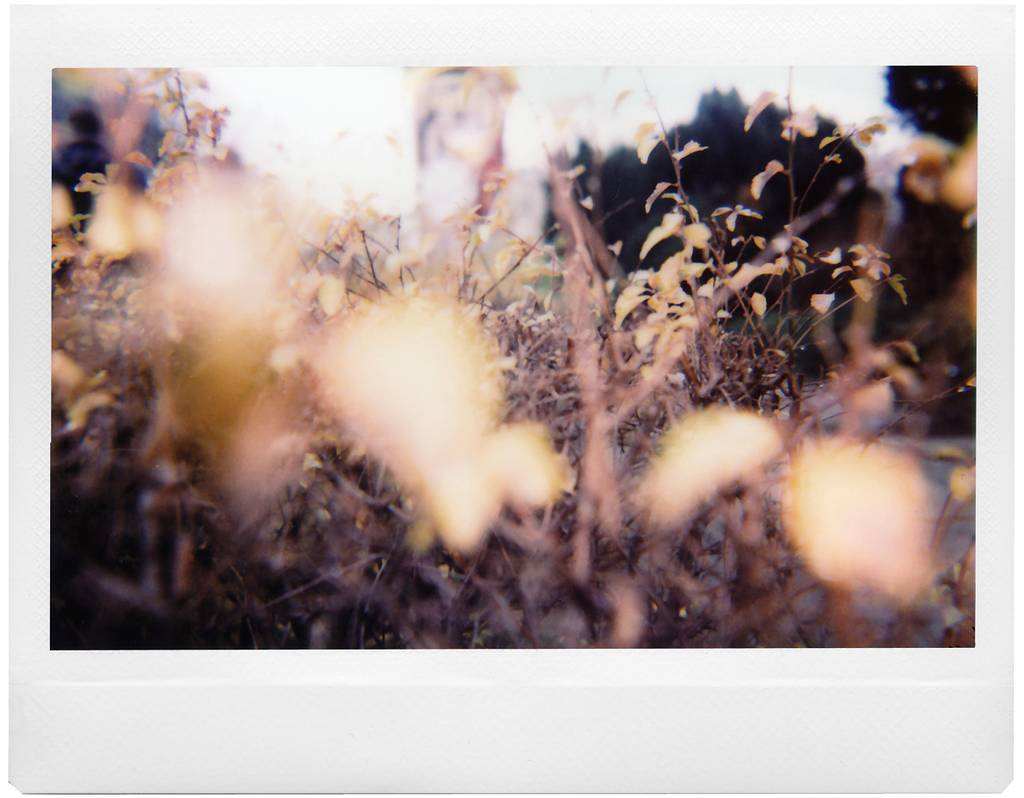 Winter in Vienna: First Impressions of the Lomo'Instant Wide