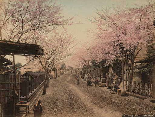 Felice Beato and the Beauty of Yokohama