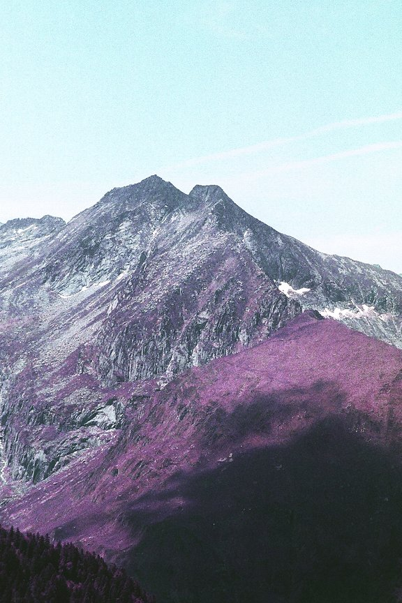 Around the World in Analogue: Purple Pyrenees