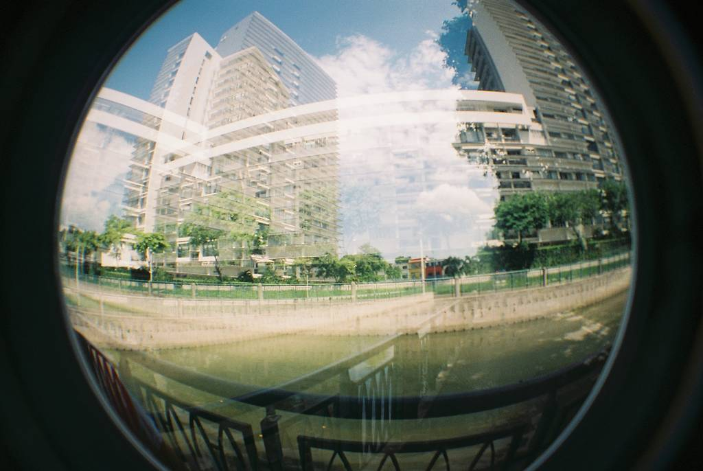 Love at First Lomo: The World Through My (Fish) Eyes
