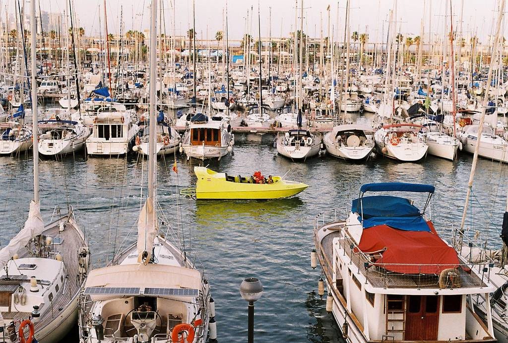 Candid and Ingenuous Scenes from the Harbor