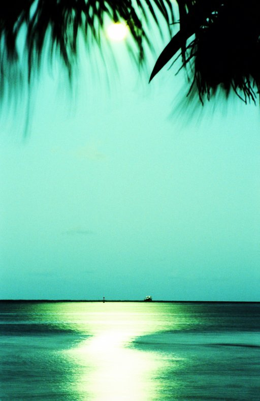 Lomographic Color Studies: Sky of Blue, Sea of Green