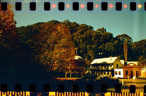 Falling for Fall: Walhalla