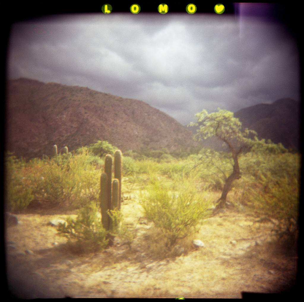 The Lomography XPro Slide 200 Film and My Holga: An In-Depth Review