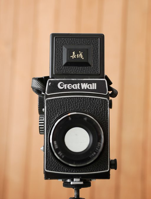 Rare and Funky: The Great Wall DF Camera, a True Lomo-Jewel
