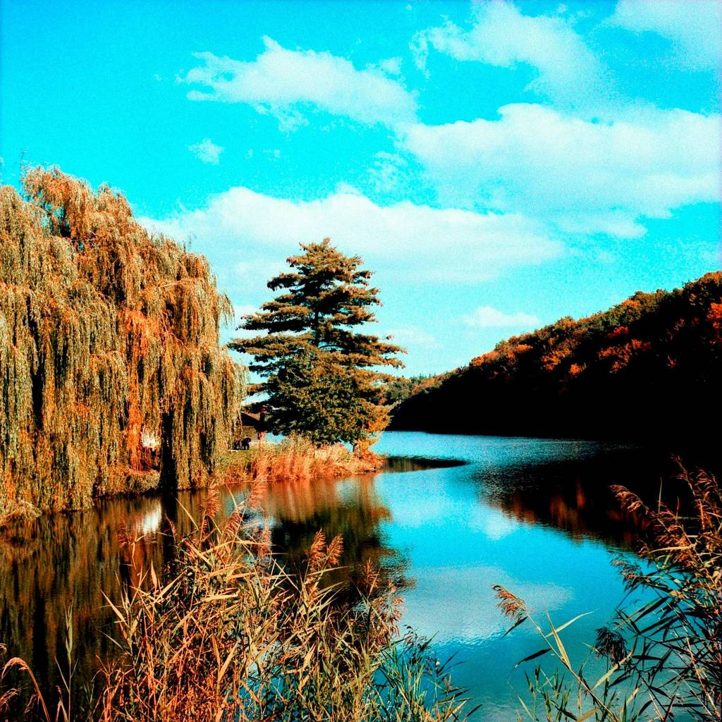 Natural Scenery in Eye-Popping Colors Courtesy of the Lomography XPro Slide 200 120