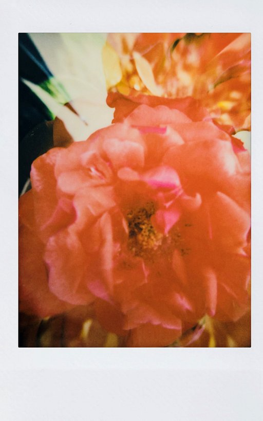 The First Instant Experience of HuiXingDao with Lomo'Instant Automat Glass