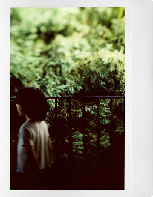 A First Peek at the Lomograflok 4x5 Instant Back by Instant Film Aficionado Adam Goldberg