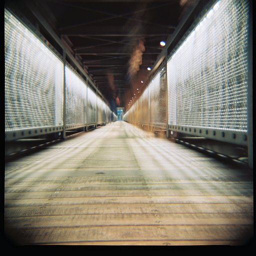 First shots from the Diana F+: This is the start of a volatile friendship!