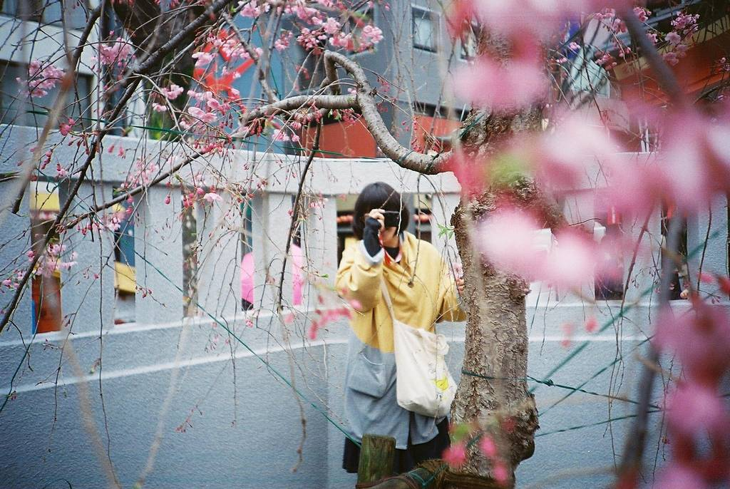 【LC-A+ギャラリー】Film Photography Day 2017 ワークショップ! ~Mystery Tour!~