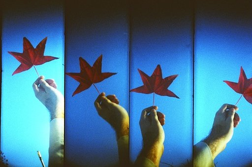 SEPTEMBER WORKSHOPS @ Lomography Gallery Store East London