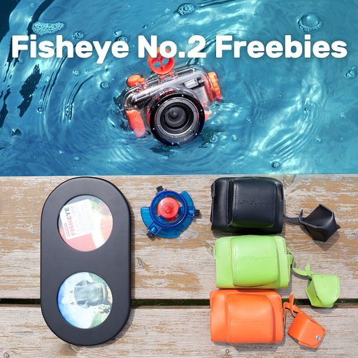 Get your Fish On with the Fish Eye No.2