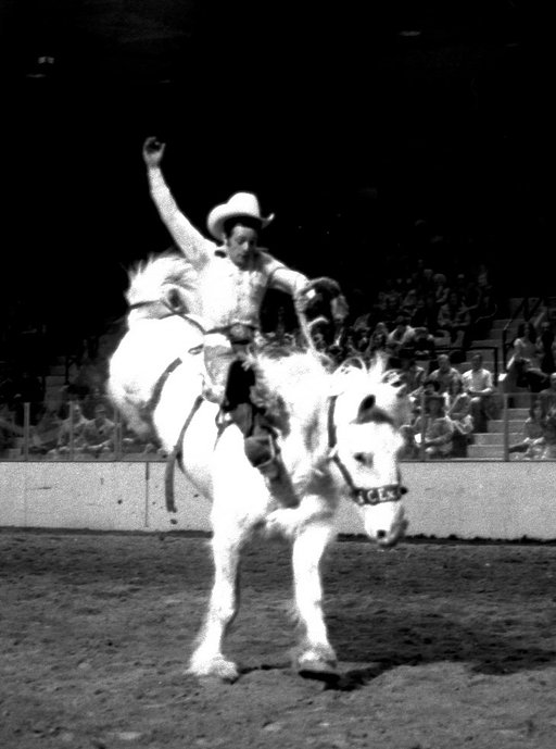 Saddle Up: Troch's Amazing Rodeo Shots