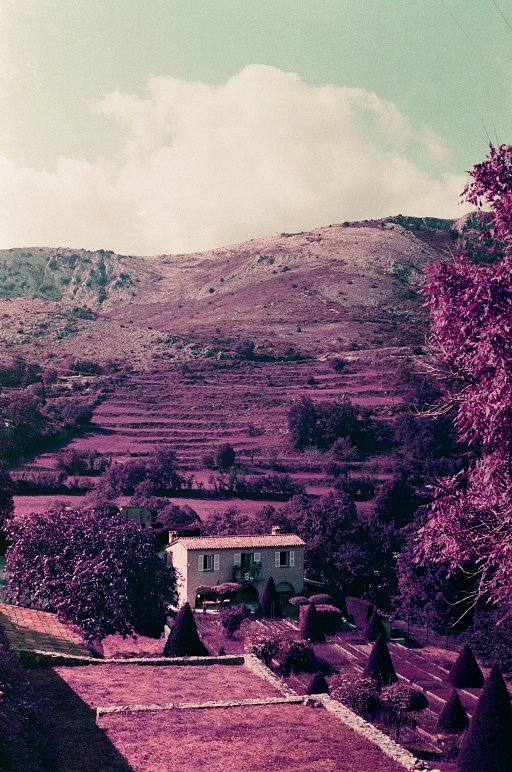 A French Escapade in Lomochrome Purple With Alexander Durie