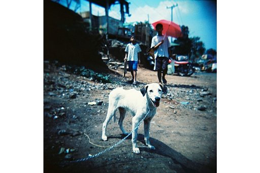 The Great Lomo LC-A Race Missions: Stage Four