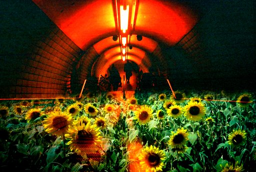 Places to Go for Traveling Lomographers: Embankment Station