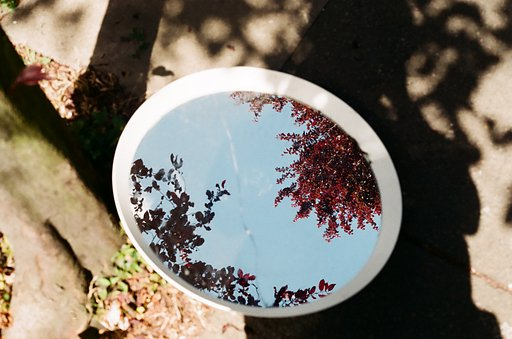 Documenting Isolation: How Lomographers Cope With Confinement, Pt. 6