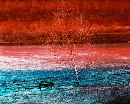 Kodak Aerochrome : La pellicule Infrarouge Couleur