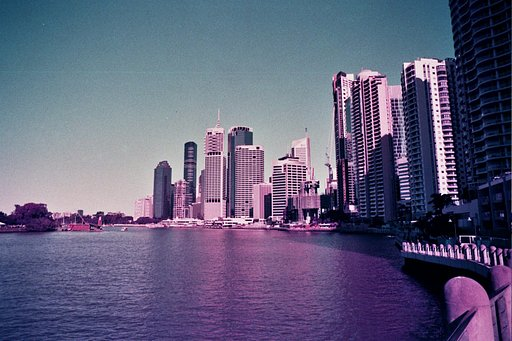Around the World in Analogue: Purple Days in Brisbane