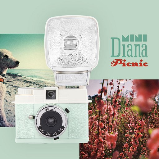 Introducing the Diana MINI Picnic!