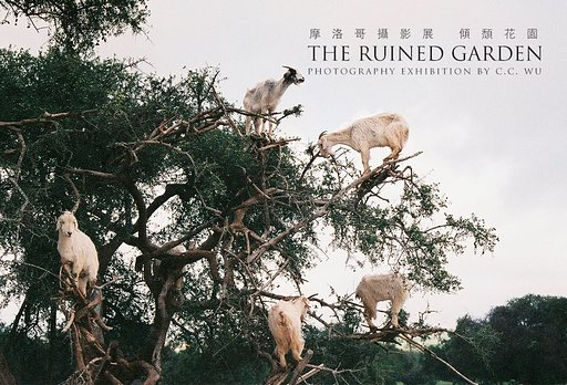 Photography in Town : 「THE RUINED GARDEN 攝影展」-C.C. Wu