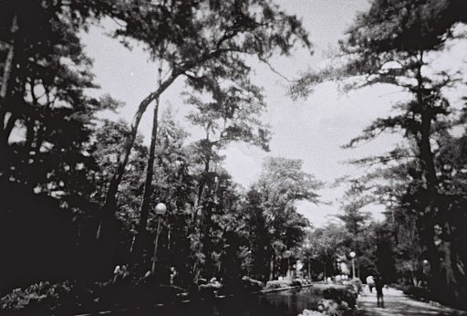 Wright Park, Baguio City