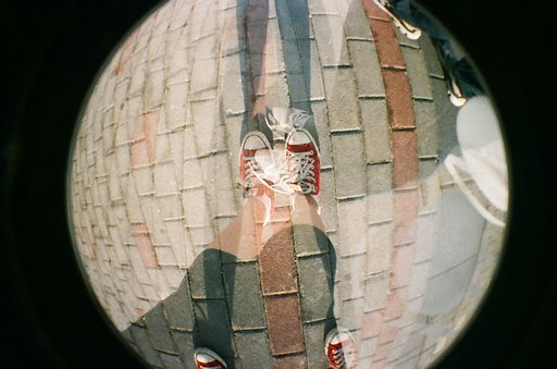 My Beginning With Lomography