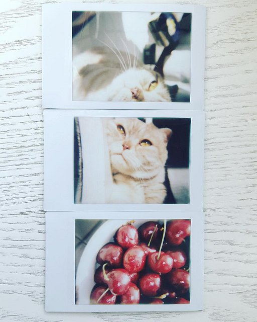 Lomo'Instant Automat: Everyday Inspiration