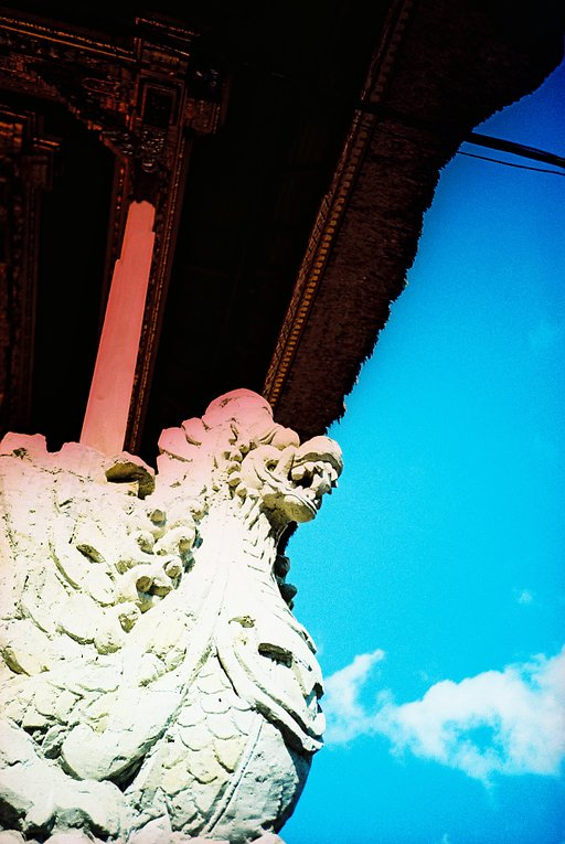 Saturate the Colors of Your Shots with Kodak Ektachrome E100G
